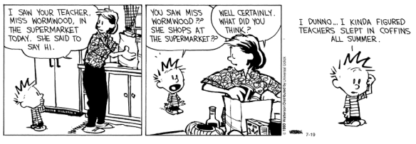 calvin and hobbes - teachers summer