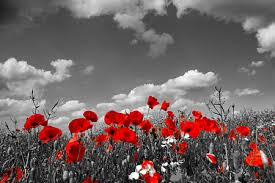 Remembrance Day - We Will Never Forget (4/4)